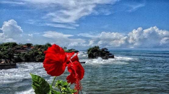 10 Thousands of Tourists Was Visit Tanah Lot After Re-opening